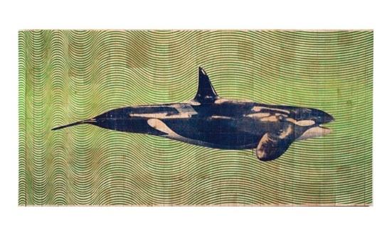 Fauna Balsa Wall Hanging, Orca