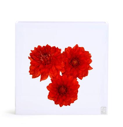 Floral Art, Flowers Dhalia Vase