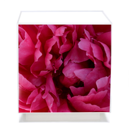 Floral Art, Fuchsia Cube table