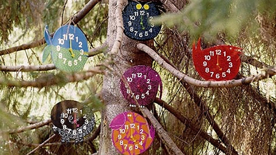 Nelson's Zoo Timers in the tree
