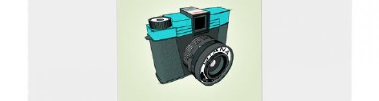 Lomo Diana Camera Print from Sean Tubridy