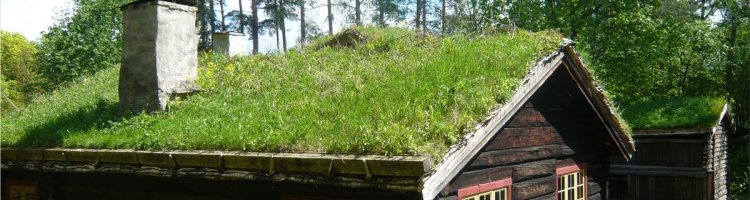 ecological roof